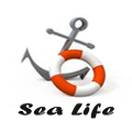 Wholesale SeaLife Theme jewelry